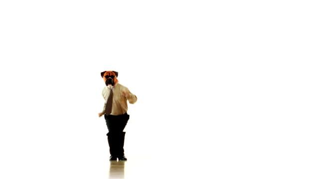 Chien saut employé de personnes - Vidéo