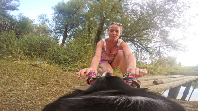 POV Dog pulling a toy rope with it's female owner video
