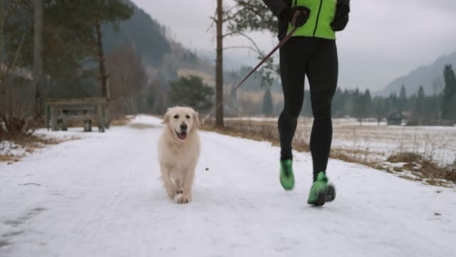 Dog running along its owner on a snowy walkway in cold weather Wide low angle handheld shot of a dog running along its male owner on a snowy path on a cold morning. Shot in Slovenia. leash stock videos & royalty-free footage