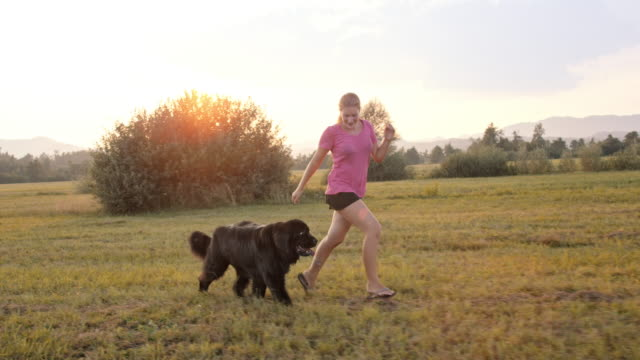 SLO MO TS Dog running next to his female owner in the meadow video