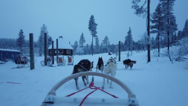 vidéos et rushes de chiens de traineaux en finlande au cours de l'hiver, du point de vue première personne - nord