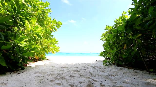 HD Dolly: Beach and sky in island Tachai. video