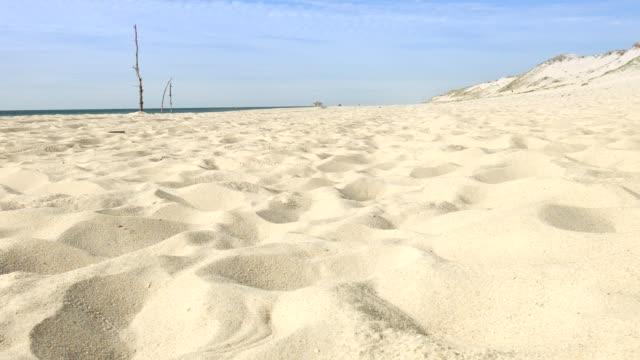 Dolly: beach at Lit-et-Mixe, Cap de l'homy, France video