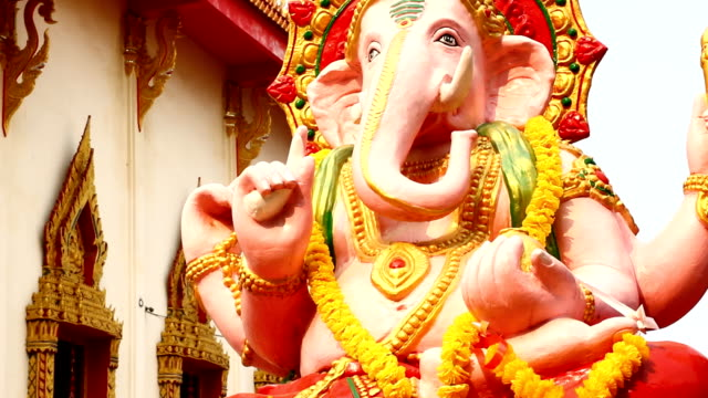 Transportwagen Kamera : Ganesh – Video