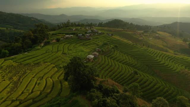dolly vista aerea destra del paesaggio terrazza di riso - filippino video stock e b–roll