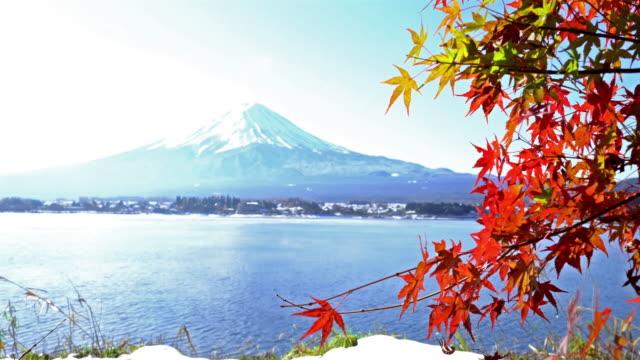 Dolly shot: Fujisan in koyo autumn at kawaguchiko lake Yamanashi Japan video