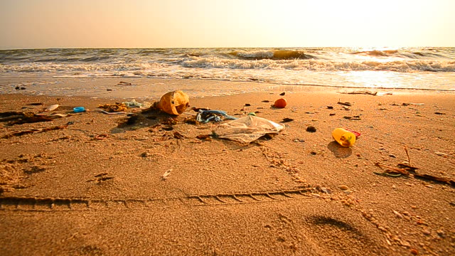 Dolly Shot: Garbage Pollutions on Dirty Beach video