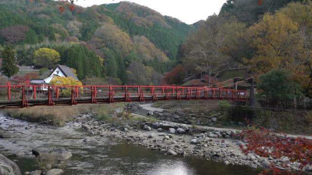 ドリー ショット: 秋赤のまま名古屋でこうらんけい森林公園 - トヨタ点の映像素材/bロール
