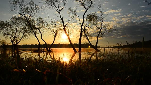 Dolly Shot: Lake Scenic Landscape at Sunrise video