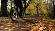 istock Dolly Shot Of A Man Cycling On A Bike In Autumn Season During A Sunny Day 1279333440