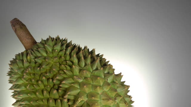 Dolly shot of Durian on white background.