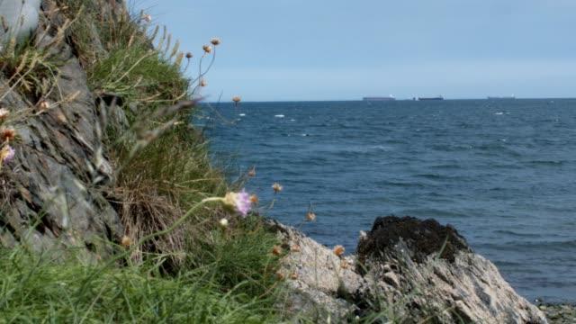 A Dolly Shot Of Sea Coast Revealing A Ship On the Horizon. video