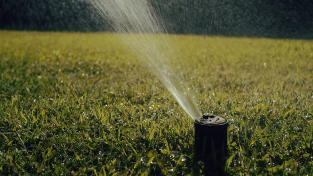 dolly shot of sprinkler head spraying water on grass. shot in slow motion
