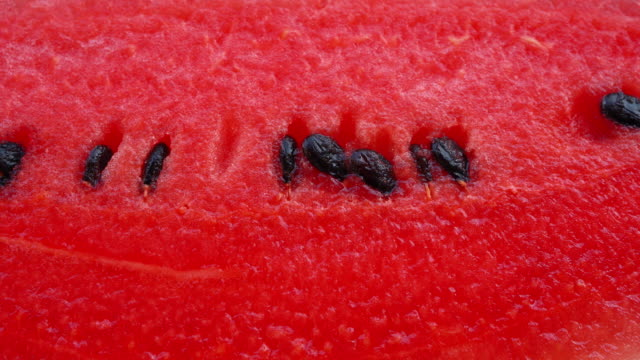 Dolly shot, watermelon texture, video in macro distance Dolly shot, watermelon texture, video in macro distance watermelon stock videos & royalty-free footage
