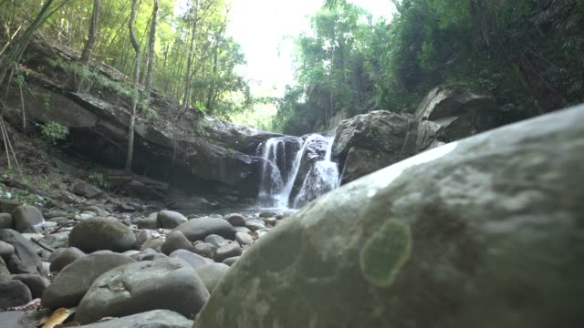 dolly tracking shot of waterfall in rainforest with rock in foreground - pianta sempreverde video stock e b–roll