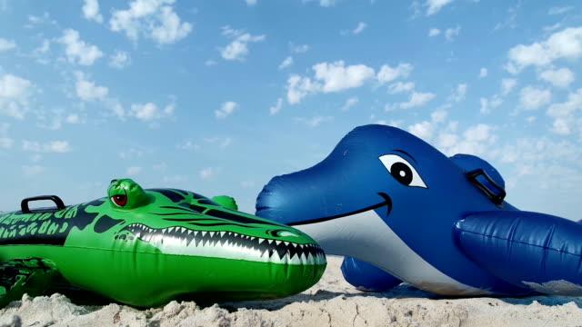 Dolphin and crocodile on the beach video