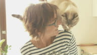istock Domestic cat playing with smiling woman, toned image, slow motion 841873104