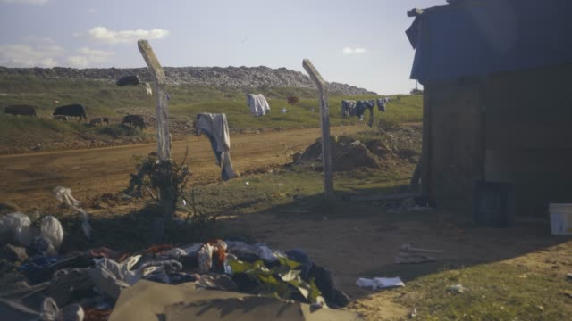 domestic waste. environmental pollution. - парагвай стоковые видео и кадры b-roll