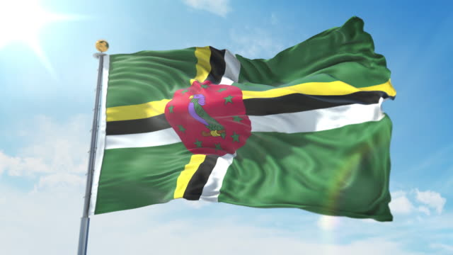 Dominica flag waving in the wind against deep blue sky. National theme, international concept. 3D Render Seamless Loop 4K Dominica flag waving in the wind against deep blue sky. National theme, international concept. 3D Render Seamless Loop 4K allegory painting stock videos & royalty-free footage