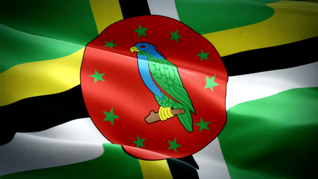 dominican flag closeup 1080p full hd 1920x1080 footage video waving in wind. national roseau 3d dominica flag waving. sign of dominica seamless loop animation. dominican flag hd resolution background 1080p - kiss filmów i materiałów b-roll