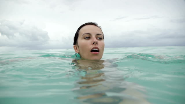 vídeos de stock, filmes e b-roll de dominikana-medo de-gato - flutuando na água