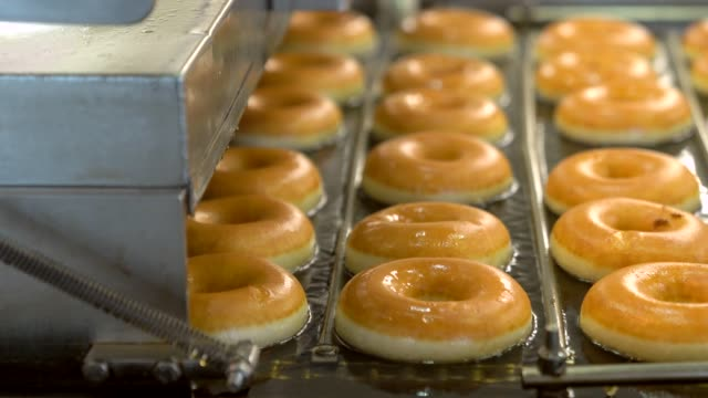 donuts cooking in oil on conveyor belt factory - bombolone video stock e b–roll