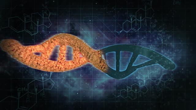 DNA double helixes change video
