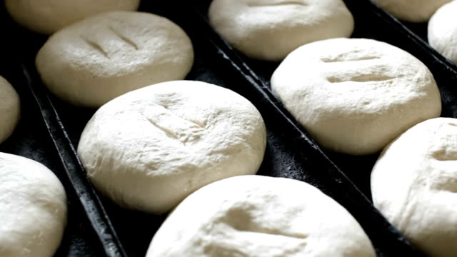 Dough for baking on oven tray video