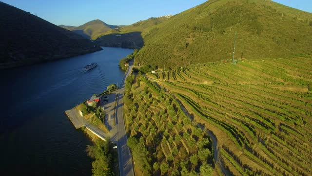 vídeos de stock e filmes b-roll de douro vineyards - douro