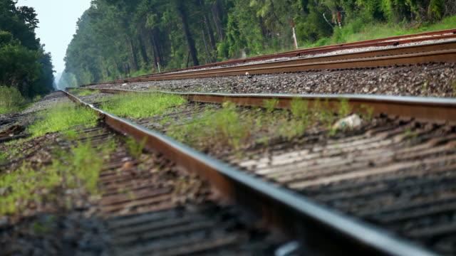 vidéos et rushes de le long de la voie ferrée - canicule