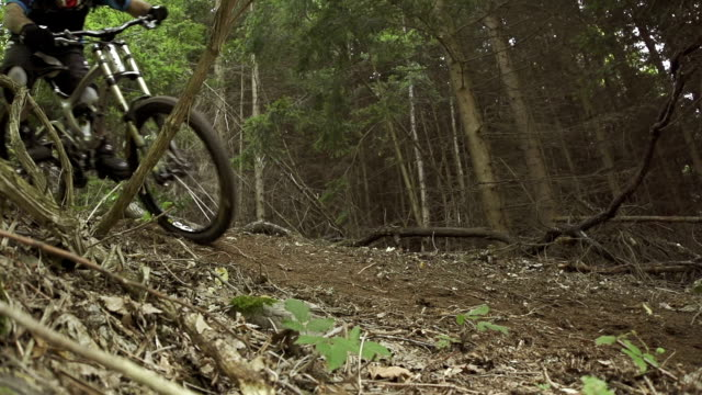 SLOW MOTION: Downhill biker in the forest video