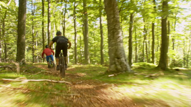 WS Downhill mountain bikers speeding in the forest video