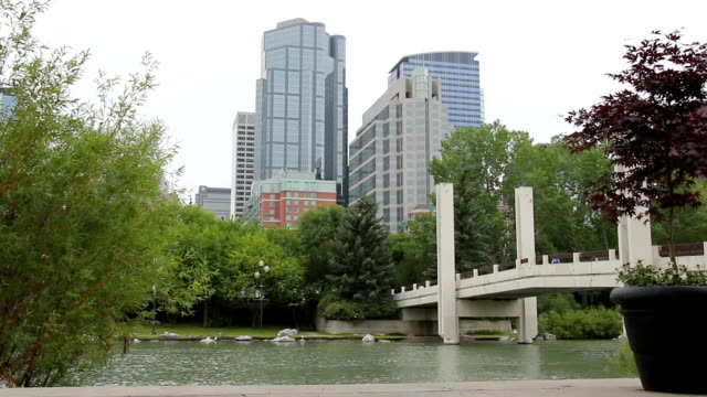 downtown Calgary pond