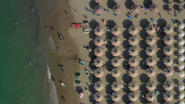 Downward Drone Shot Of The Adriatic Sea On The Left And Brown Beach Umbrellas On The Right