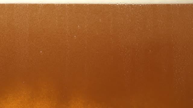проект пива - сочный стоковые видео и кадры b-roll