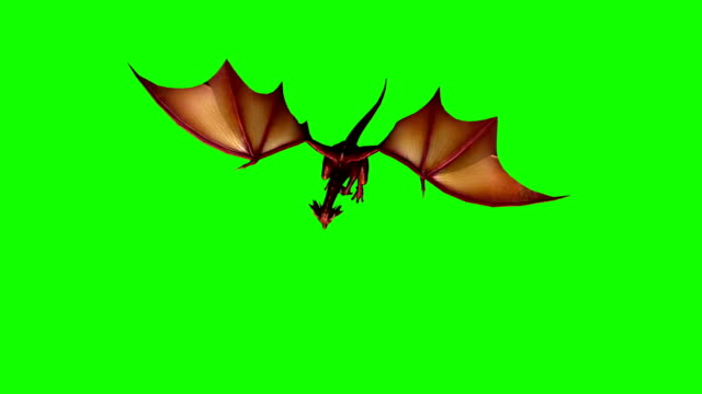 dragon fly attack 3 - green screen - dragon stock videos and b-roll footage