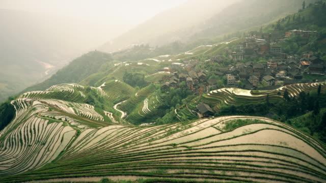 dragon's back rice terraces of longji - longji tetian filmów i materiałów b-roll