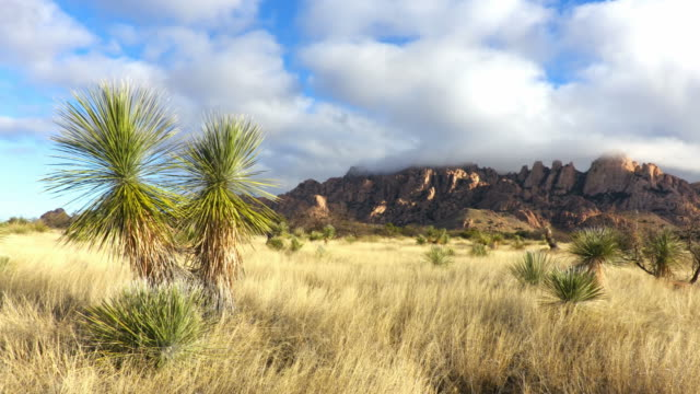 Dragoon Mountains in Southern Arizona