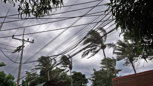 Dramatic moody sky strong wind as Tropical Storm Pabuk approches Ko Lanta, Krabi province, Thailand - Jan 04 2019:   The sun is setting behind dark clouds.  Tropical Storm Pabuk is hours away.  The first tropical storm to make landfall in Thailand in decades.  The wind is strong and bending the tall coconut palm trees.  Preparations are underway for the looming natural disaster.  The location is Ko Lanta, Krabi province, Thailand. power line stock videos & royalty-free footage