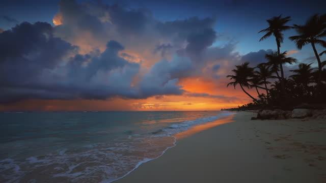 dramatic sea sunrise over tropical island beach with exotic coconut palm trees - palm tree filmów i materiałów b-roll