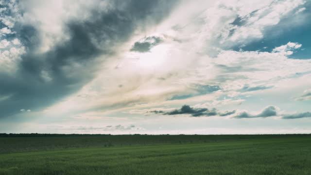 kırsal peyzaj alanı çayır üzerinde ufukta yağmur bulutları ile yağmur önce dramatik gökyüzü. tarım ve hava durumu tahmin konsepti. zaman atlamalı, zaman atlamalı, zaman atlamalı - full hd format stok videoları ve detay görüntü çekimi