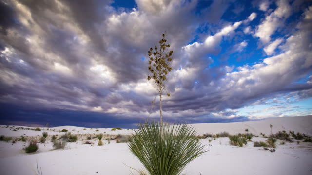 Dramatic Sky Over White Sands - Time Lapse video