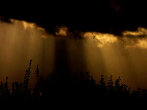 ntsc: dramatic sky - 描述 個影片檔及 b 捲影像
