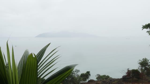 dramatische aussicht auf eine nebige tropische insel mit palmblättern schwingen. - indochina stock-videos und b-roll-filmmaterial
