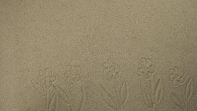 Dessin avec un bâton sur le sable. Beaucoup de fleurs de marguerite en fleurs. Dessin symbolique du tourisme et des loisirs. - Vidéo