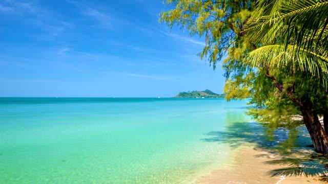 spiaggia da sogno - caraibi video stock e b–roll