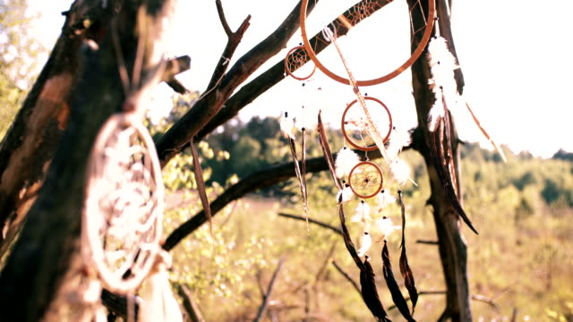 dream catcher hanging in natural wilderness in afternoon sunlight video