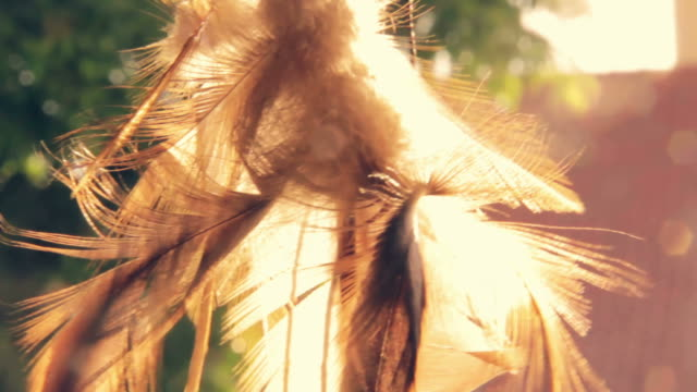 Dreamcatcher in the sun, summer video