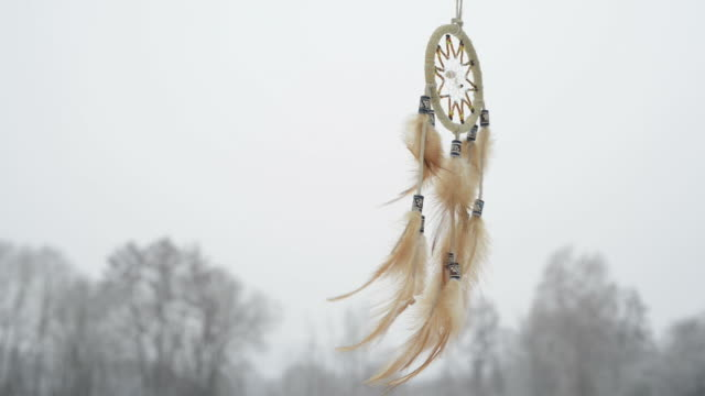 Royalty free dreamcatcher hd video 4k stock footage b roll istock dreamcatcher winter landscape hd video voltagebd Images