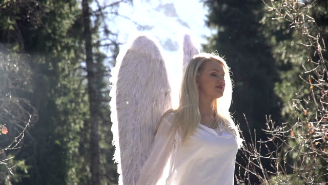 Dreamed Angel video